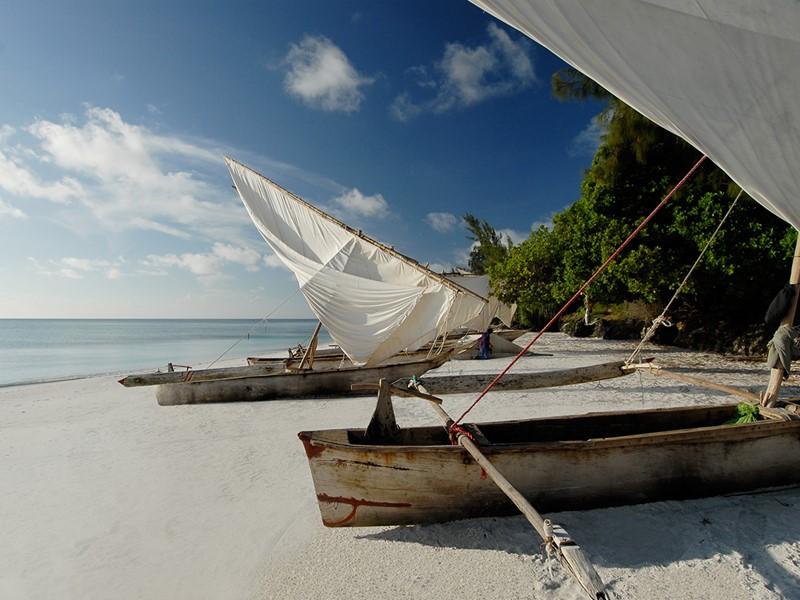 Naviguez sur les eaux de l'Océan Indien