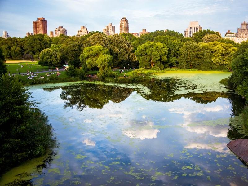 Central Park, d'une superficie de 340 hectares, le poumon vert de la ville