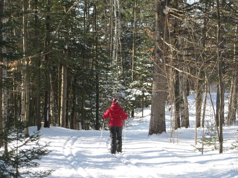 Chaussez les skis et partez explorer la nature environnante