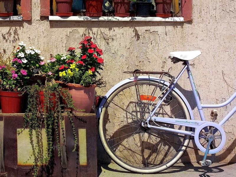 Partez à la découverte de la région à vélo