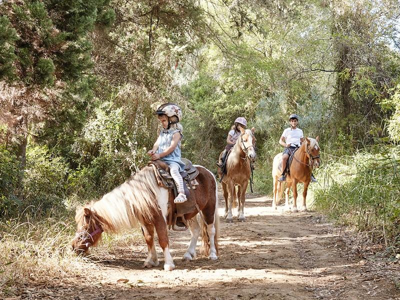 Balade à dos de cheval au Grecotel Olympia Oasis