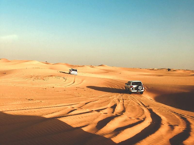 Aventurez-vous dans les dunes dorées du désert