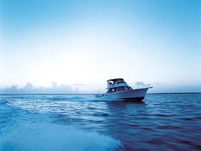 Balade en bateau au Parrot Cay & Como Shambala