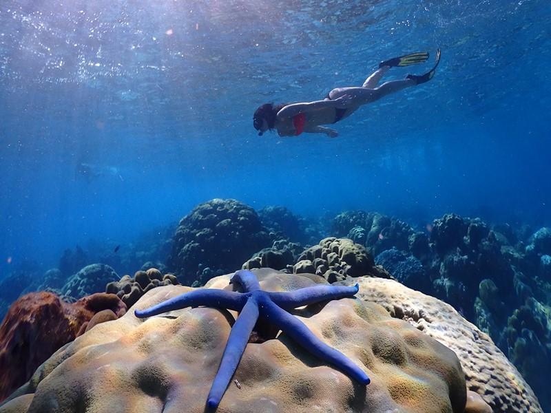 Explorez les fonds marins de Koh Lanta