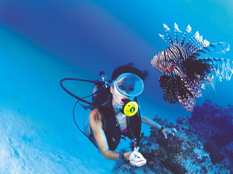 Explorez les fonds marins de Moorea