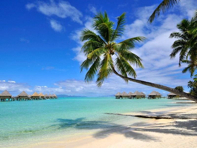 Relaxez-vous sur des plages de rêve