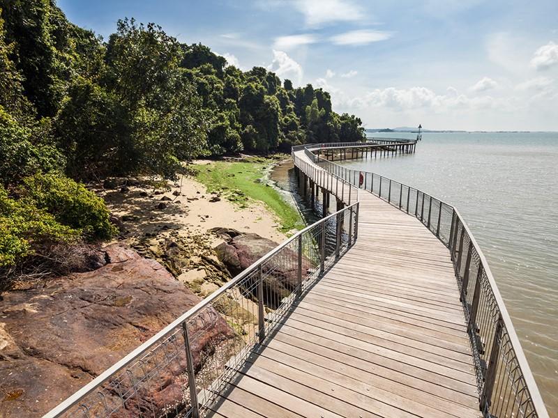 Macritchie Reservoir Park Singapour
