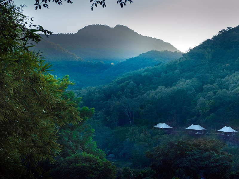 Un luxueux hôtel enfoui dans la jungle