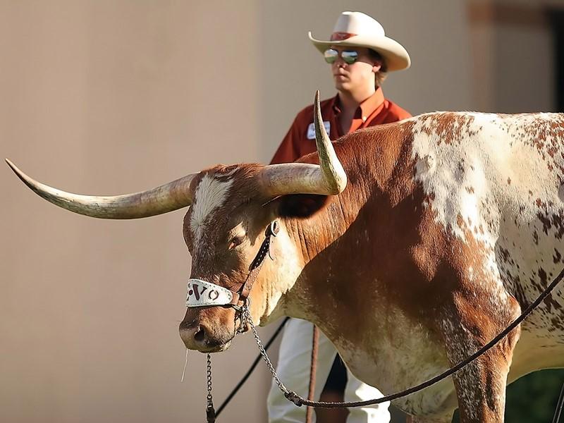 Plongez vous dans l'atmosphère typique du Texas à Amarillo