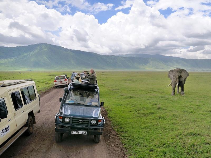 Safari dans le cratère de Ngorongoro