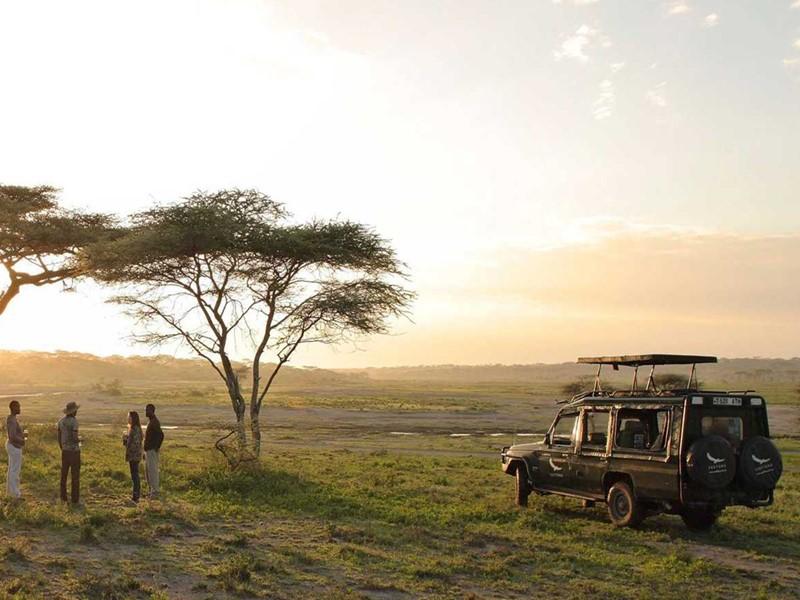 Contemplez les paysages pendant le safari au Serengeti
