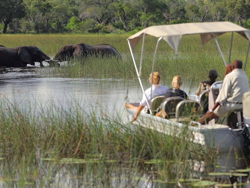 Safari sur l'eau
