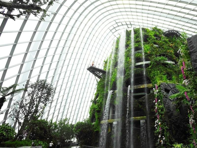 Visitez le Jardin Botanique de Singapour et ses nombreux écosystèmes