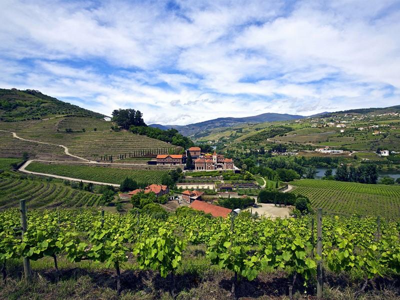 Vue du Six Senses Douro Valley, situé au milieu des vignes