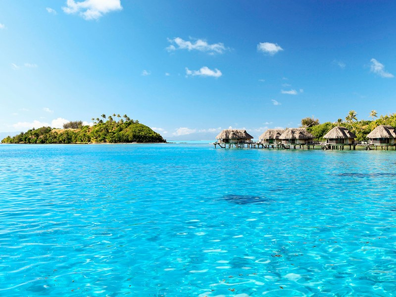 Le Sofitel Bora Bora vous charmera par son lagon cristallin
