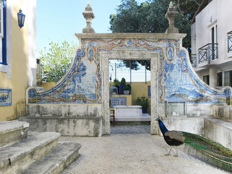 Petit patio de l'hôtel où se promènent des paons en liberté