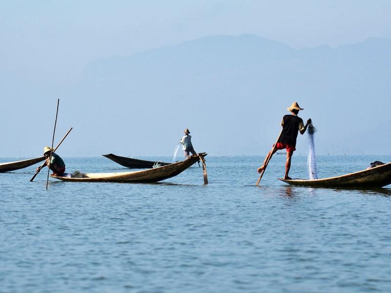 Admirez le ballet des pêcheurs sur le splendide lac Inle.