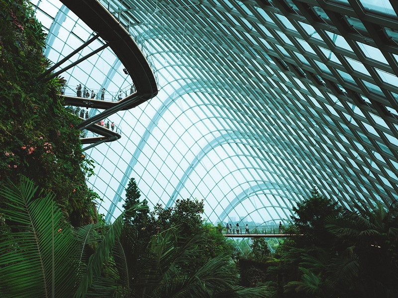 Visitez le Flower Dome et la Cloud Forest.