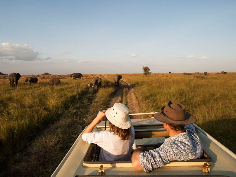 Découvrez les grandes plaines du Serengeti