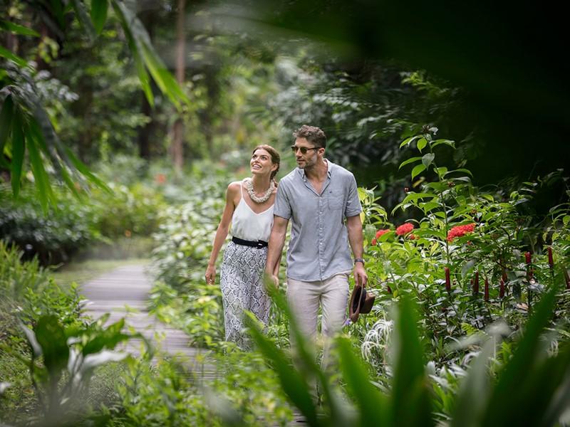 Le jardin luxuriant de l'hôtel The Datai Langkawi