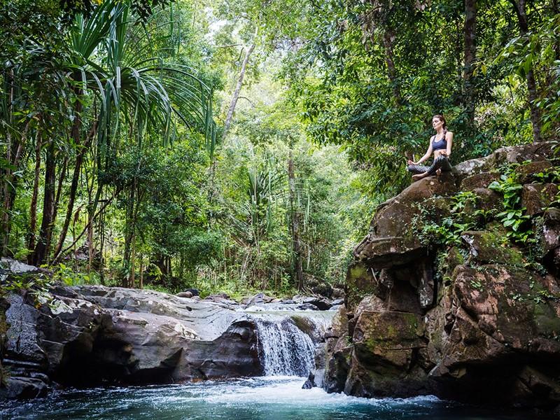 Immergez vous dans un cadre naturel incroyable durant votre séjour au Datai