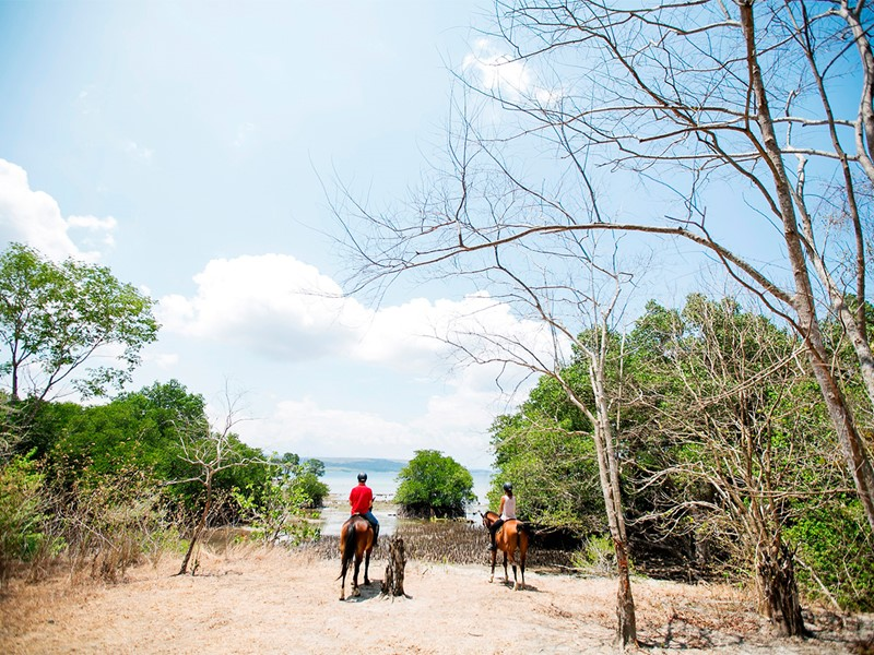 Équitation au Menjangan situé à Bali
