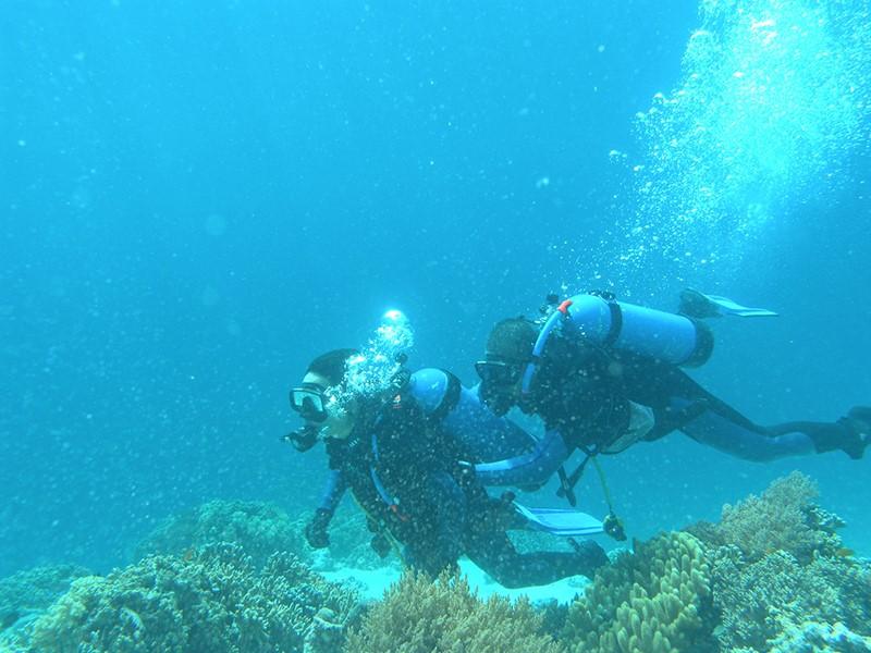 Plongez dans les fonds marins du Menjangan