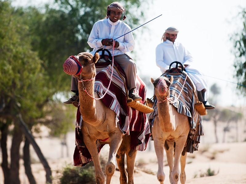 Balade à dos de chameau au Banyan Tree Al Wadi