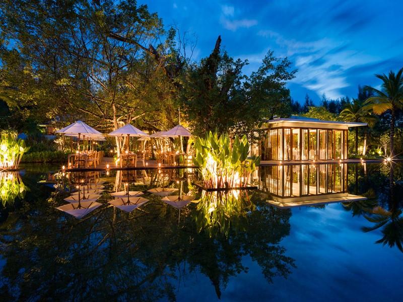 Le restaurant Ficus