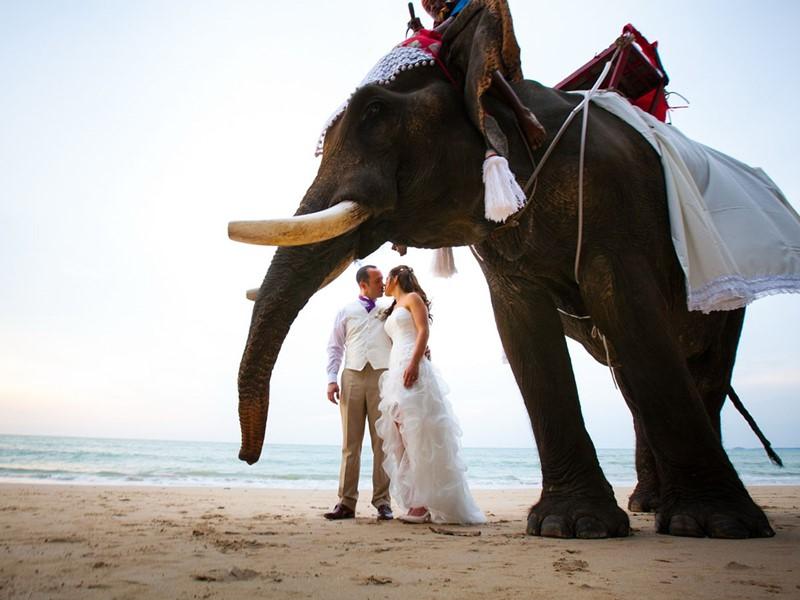 Mariage dans un cadre de rêve