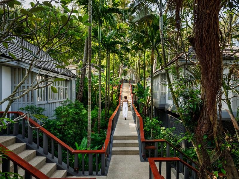 Une végétation luxuriante