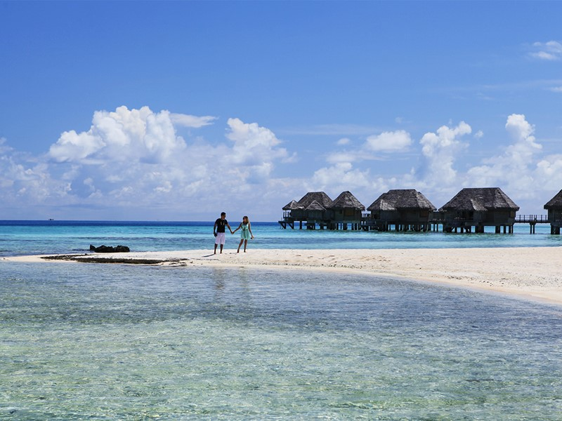 La plage de l'hôtel Tikehau Pearl Beach Resort en Polynésie