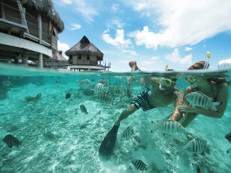 Snorkeling à l'hôtel Tikehau Pearl Beach en Polynésie