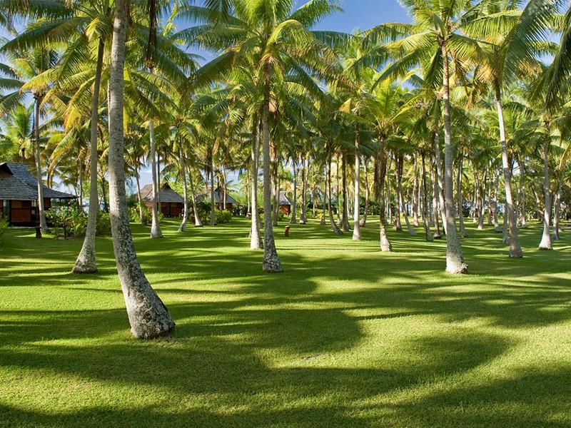 Jardin de l'hôtel Vahine Island à Tahaa