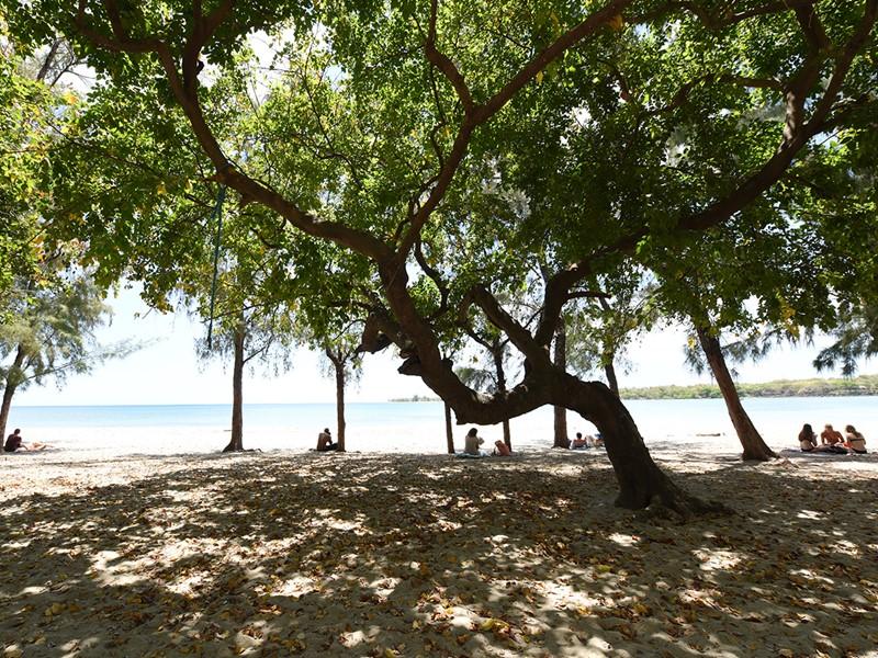 La plage de Tamarin, situé sur la côte ouest de l'île Maurice