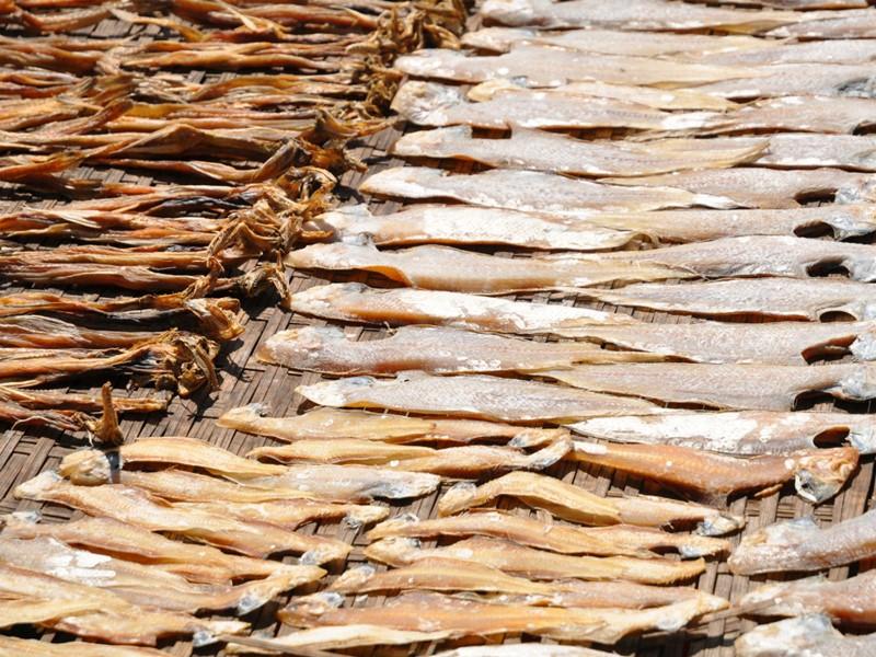 Les poissons séchés sur les marchés du sud du pays