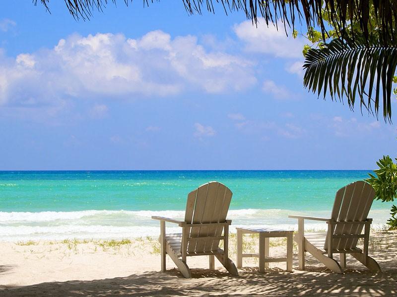 Profitez des magnifiques plages des Seychelles