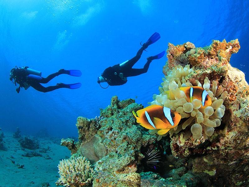 Essayez-vous à la plongée sous-marine