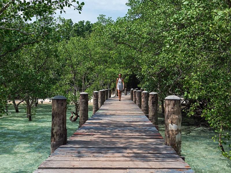 Le Wa Ale Island est situé dans une magnifique crique protégée