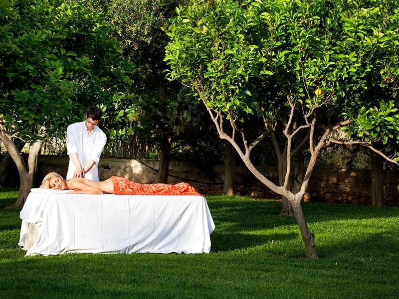 Faites-vous chouchouter au milieu d'oliviers et d'arbres fruitiers