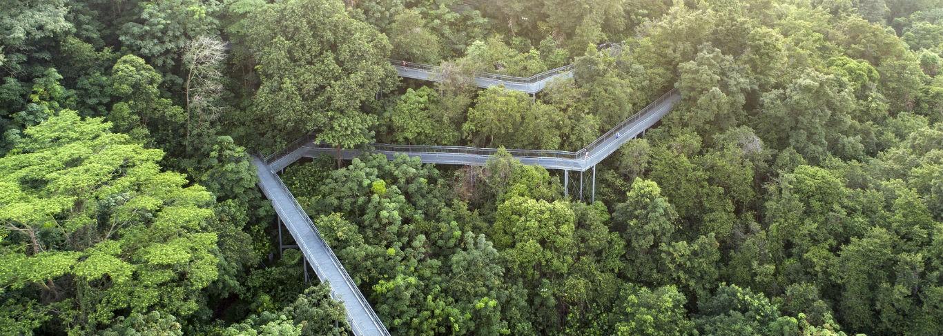 Southern Ridges Singapour