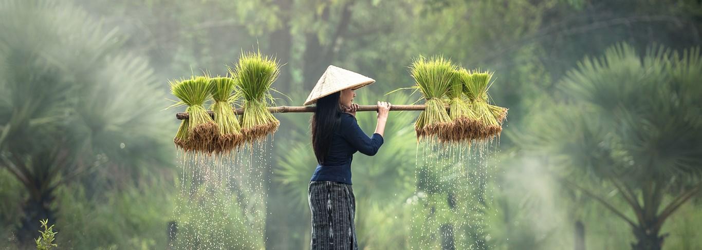 A la rencontre du peuple Lao