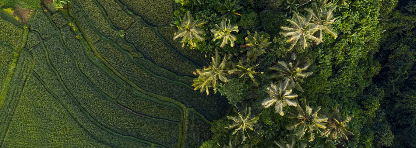 Bali & Lombok en adresses de charme