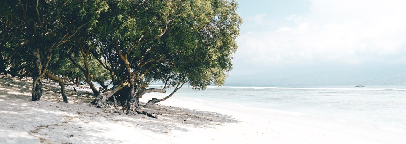 L'Indonésie, un voyage d'émotions