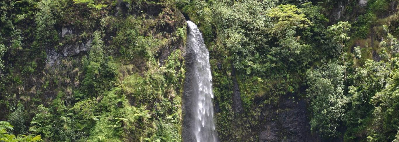 Les cascades de Te Faarumai