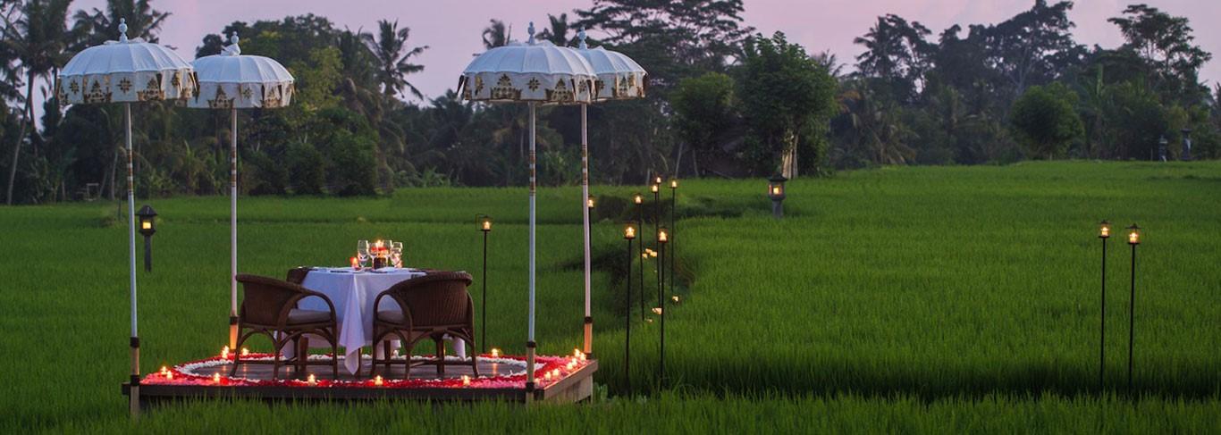 Diner romantique dans les rizières