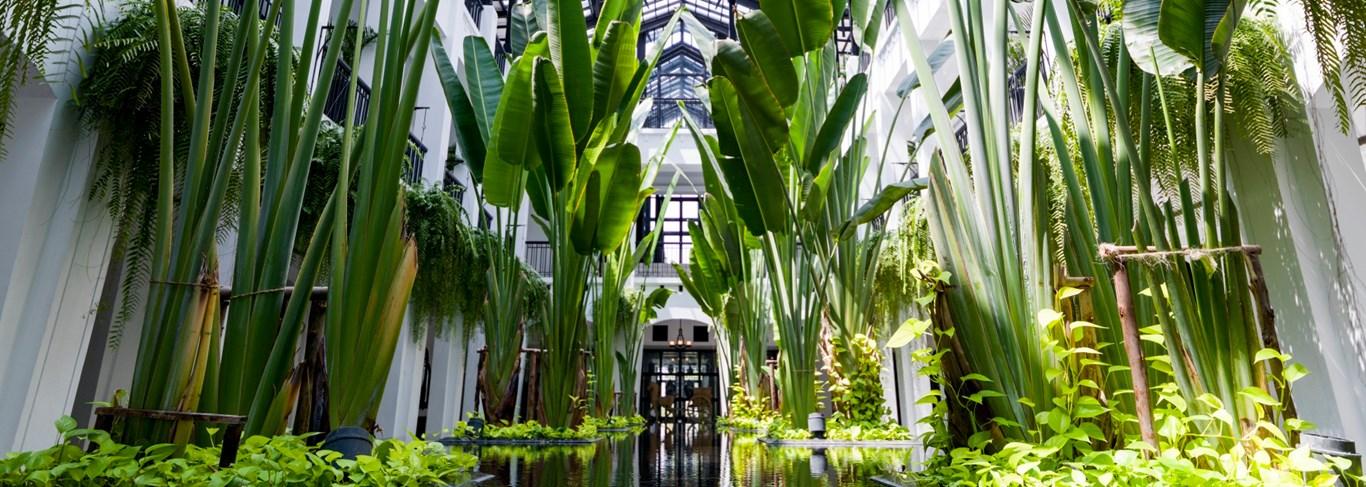 The Siam