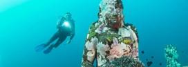Bali au rythme des plongées