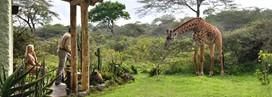 Hatari Lodge
