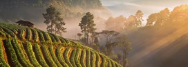 Les capitales culturelles de l'Asie du sud-est